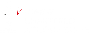 icaew accountants in Andover